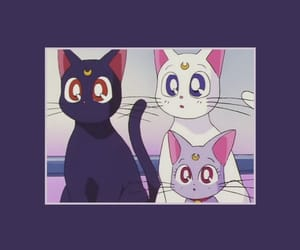 cat, sailor moon, and wallpaper image