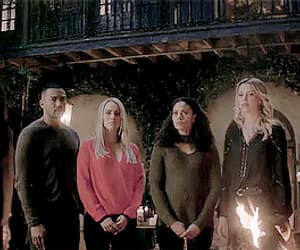 family, gif, and The Originals image