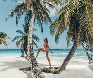beach, paradise, and tropical image