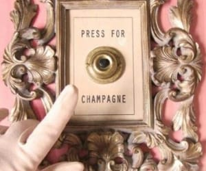 champagne, pink, and press image