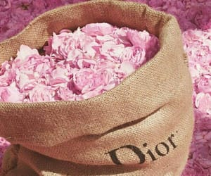 background, dior, and flowers image