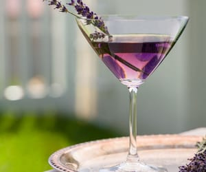 drink, lavender, and martini image