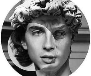 escultura, call me by your name, and timothee chalamet image