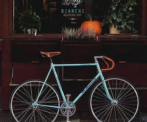 photography, autumn, and bicycle image
