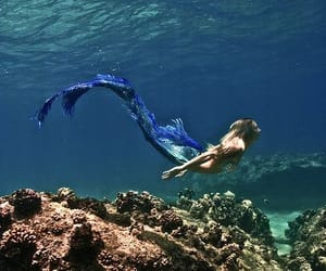 mermaid, blue tail, and sea image