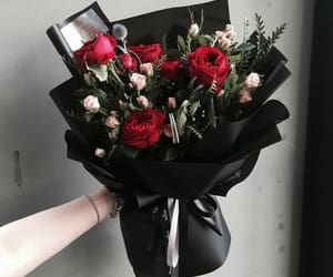 articles, red flower, and flower bouquet image