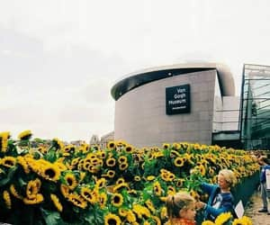 flowers, museum, and art image