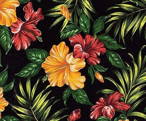 flower, summer, and tropical image