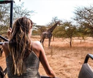 fashion, giraffe, and girl image