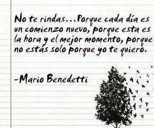 frases, benedetti, and libros image