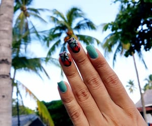 beach, beauty, and nails image