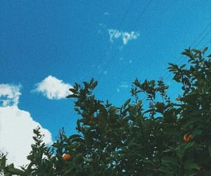aesthetic, clouds, and lemons image