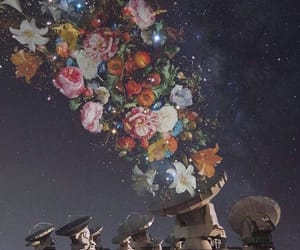 flowers and space image