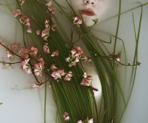 flowers, pink, and green and pink image