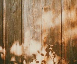 tree, wood, and shadow image