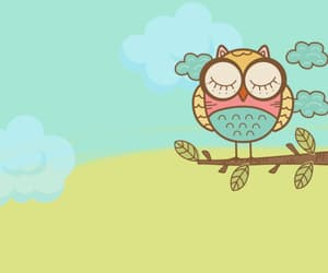 spring, background, and owl image
