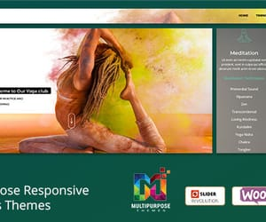 wordpress themes and premium wordpress themes image