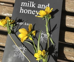 book, flowers, and yellow image