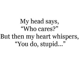 quotes, heart, and stupid image