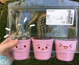 cactus, cute, and aesthetic image