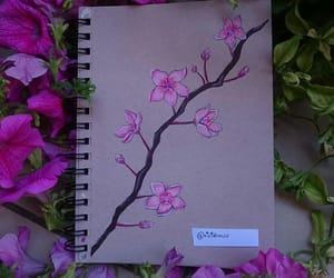 art, cherry blossoms, and colors image