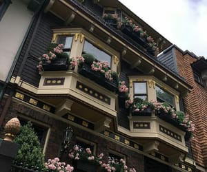 flowers, aesthetic, and house image