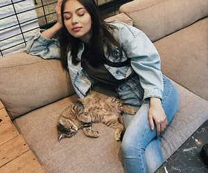 cat, tired, and stay fit image