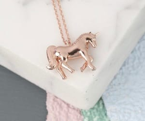 chain, horse, and necklace image