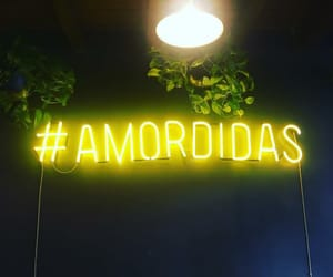 neon lights, quotes, and couple amor image