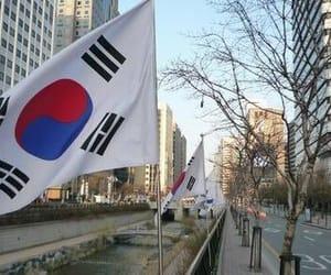 article, korea, and koreanfood image