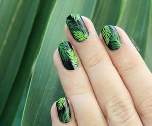 nails, summer, and green image