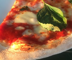 life, margarita, and pizza image