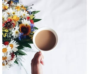coffee, daisy, and flowers image