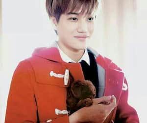 bear, handsome, and k-pop image