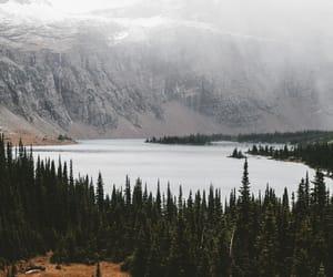 fog, lake, and landscape image