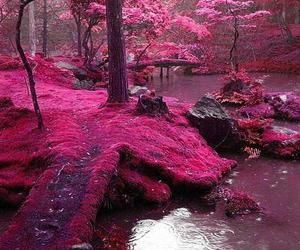 forest, landscape, and pink image