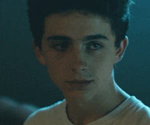 actor, love, and timothee chalamet image
