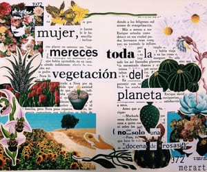 flores, mujer, and citas image