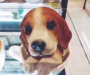 aesthetic, beagles, and dog image