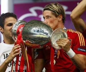 fernando torres, spain, and champion image