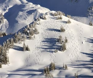 ski, snow, and wyoming image