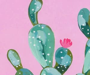 pink, wallpaper, and cactus image