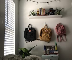 books, plants, and room image