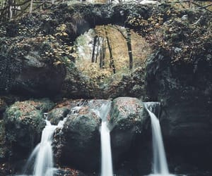 belleza, puente, and naturaleza image