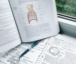 biology and study image