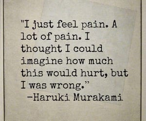 pain, haruki murakami, and hurt image