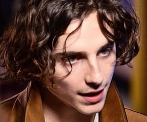 handsome, Hot, and timothee chalamet image