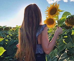 hairstyle, hairgoals, and sunflower image