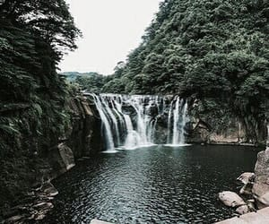 green, tree, and waterfall image