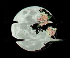moon, dark, and flowers image